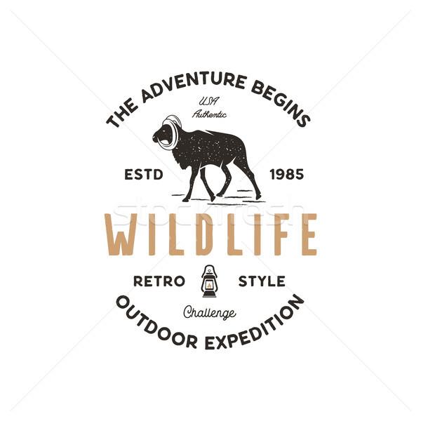 Adventure logo design. Camping adventures badge template. Wild goat typogaphy insignia concept. Vint Stock photo © JeksonGraphics