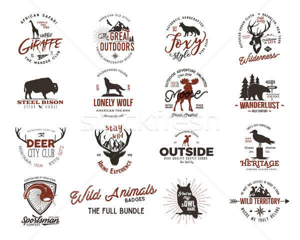 Wild animal badges set. Included giraffe, owl, fox and deer and other shapes. Full set. Stock vector Stock photo © JeksonGraphics