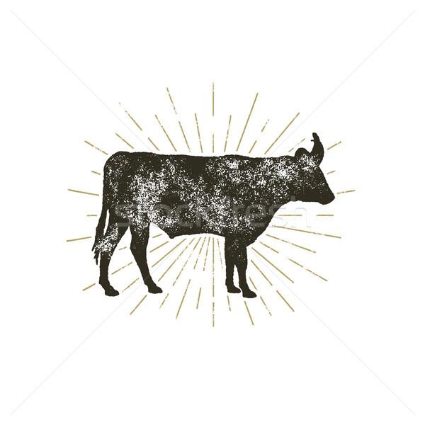Vintage hand drawn cow icon. Farm animal silhouette shape. Retro black style cow with sunbursts, iso Stock photo © JeksonGraphics