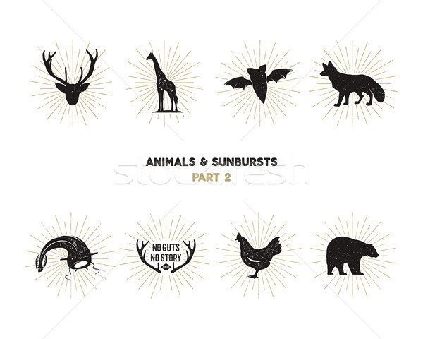 Set of wild animal figures and shapes with sunbursts isolated on white background. Black silhouettes Stock photo © JeksonGraphics