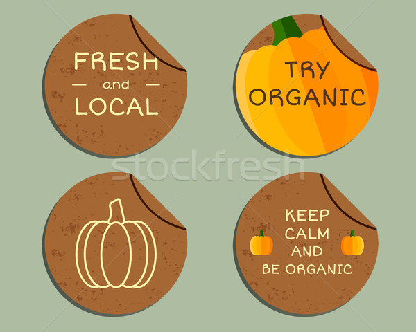Organic farm corporate identity design with pumpkin. Branding your eco shop, company. Labels, badges Stock photo © JeksonGraphics