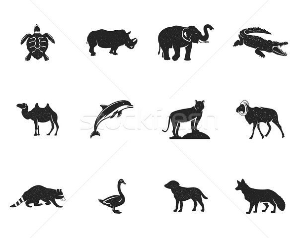 Stock photo: Wild animal figures and shapes collection isolated on white background. Black silhouettes turtle, rh