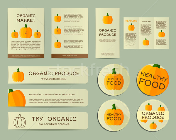 Organic business corporate identity design with pumpkin. Branding your organic company. Brochure. Mo Stock photo © JeksonGraphics