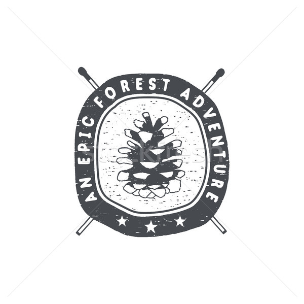 Vintage hand drawn forest adventure badge and emblem. Hiking label. pine cone symbol. Typography ret Stock photo © JeksonGraphics