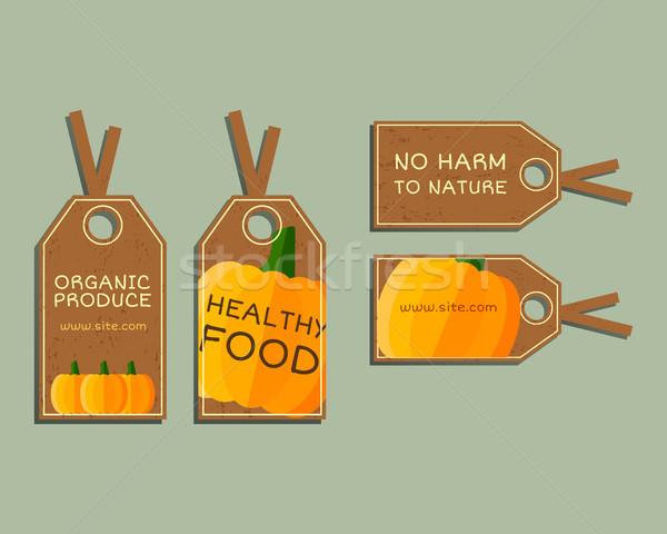 Organic farm corporate identity design with pumpkin. Branding your eco shop, company. Stickers. Mock Stock photo © JeksonGraphics