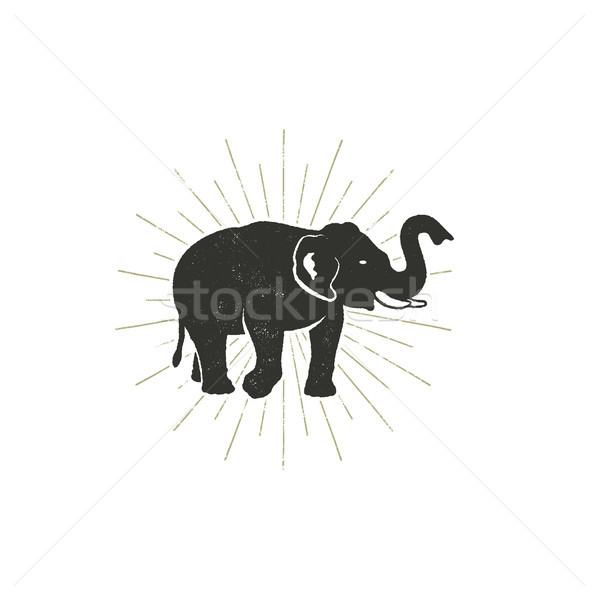 Elefanten Symbol Jahrgang Hand gezeichnet wildes Tier Symbol Stock foto © JeksonGraphics