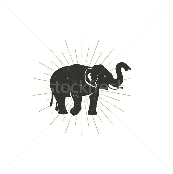 Elephant icon. Vintage hand drawn wild animal symbol. Monochrome retro design, style. With sun burst Stock photo © JeksonGraphics