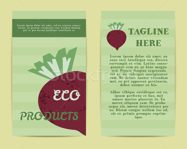 Stylish Farm Fresh flyer, template or brochure design with beet vegetable. Mock up design with shado Stock photo © JeksonGraphics