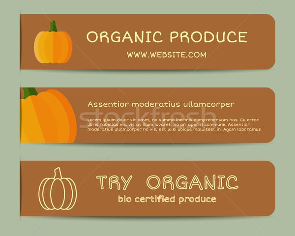 Foto stock: Outono · fazenda · fresco · marca · identidade · elementos