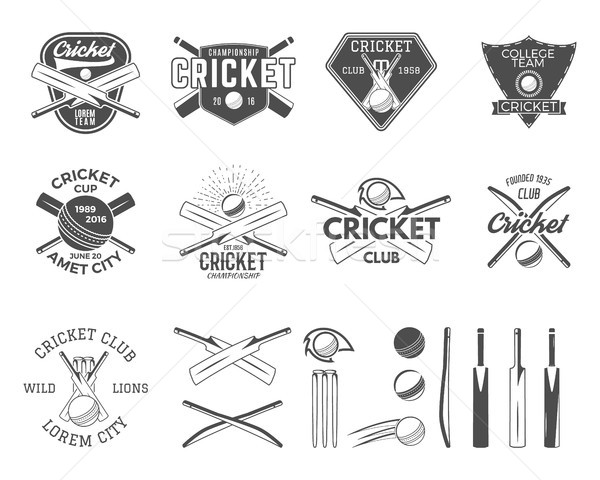 Set of vector cricket sports logo templates. Cricketer emblems and gear, equipment symbols. Sporting Stock photo © JeksonGraphics