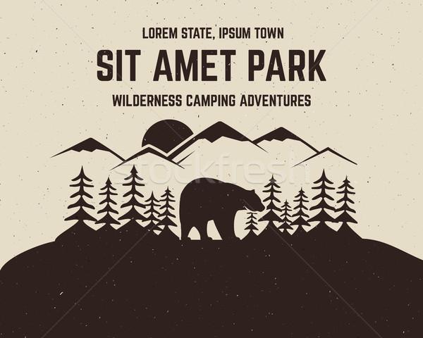 Camping brochure étiquette flyer affaires web Photo stock © JeksonGraphics