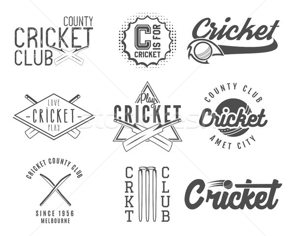 Ingesteld cricket team embleem ontwerp communie Stockfoto © JeksonGraphics
