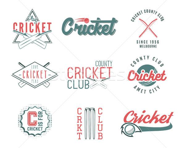 Ayarlamak Retro kriket spor şablon logo Stok fotoğraf © JeksonGraphics