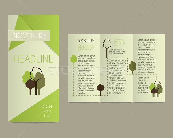 Brochure and flyer design template in polygonal style concerning to ecology, organic themes with inf Stock photo © JeksonGraphics