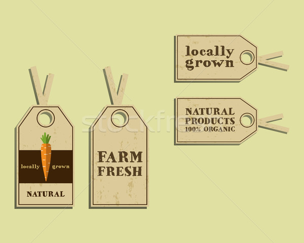 Stylish Farm Fresh sticker and label, template or brochure design with carrot. Mock up design with s Stock photo © JeksonGraphics