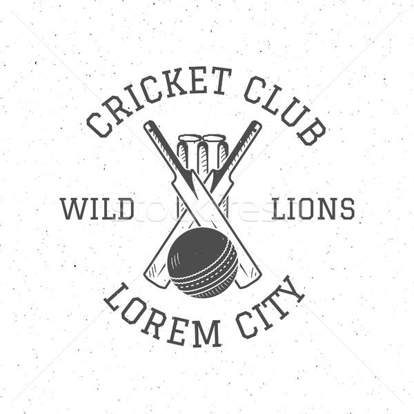 Retro cricket club logo icon design. Vintage Cricket vector emblem. Cricket badge. Sports tee design Stock photo © JeksonGraphics