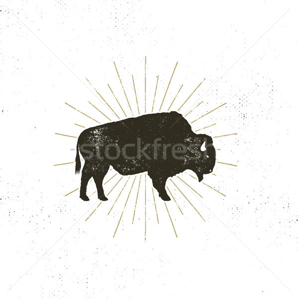 bison icon silhouette. Retro letterpress effect. Buffalo symbol with sunbursts isolated on white bac Stock photo © JeksonGraphics