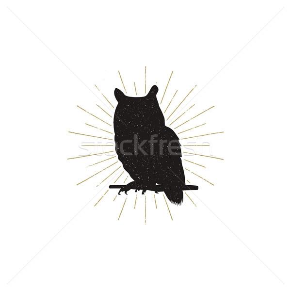 Baykuş siluet biçim yalıtılmış beyaz siyah Stok fotoğraf © JeksonGraphics