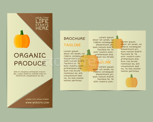 Natural business corporate identity design with pumpkin. Branding your organic company. Brochure. Mo Stock photo © JeksonGraphics