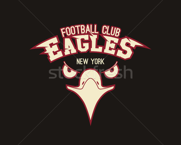 Eagle sport tee graphic. Stylish design for american, european football team, tournament logo, badge Stock photo © JeksonGraphics