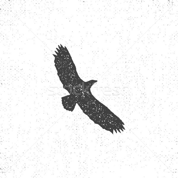 Eagle silhouette symbol. Retro style. Letterpress effect. Eagle icon design. Vector vintage element Stock photo © JeksonGraphics