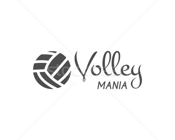 Röplabda címke kitűző logo ikon sportok Stock fotó © JeksonGraphics