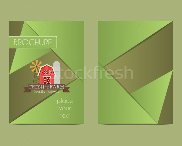 Brochure and flyer a4 size design template with Organic farm concept. Best for natural farm, shop et Stock photo © JeksonGraphics