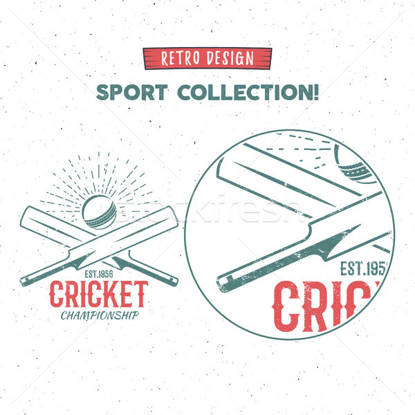 Retro cricket logo icon design. Vintage cricketer emblem design. Cricket badge. Sports tee design an Stock photo © JeksonGraphics