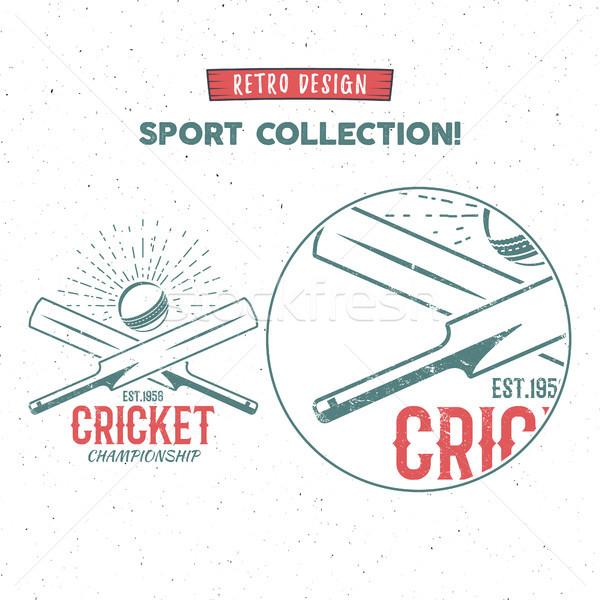 Retro cricket logo icon ontwerp vintage Stockfoto © JeksonGraphics