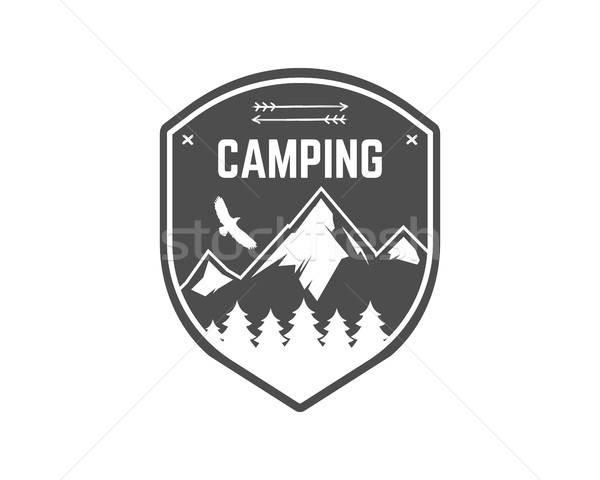 Camping étiquette vintage montagne hiver camp Photo stock © JeksonGraphics