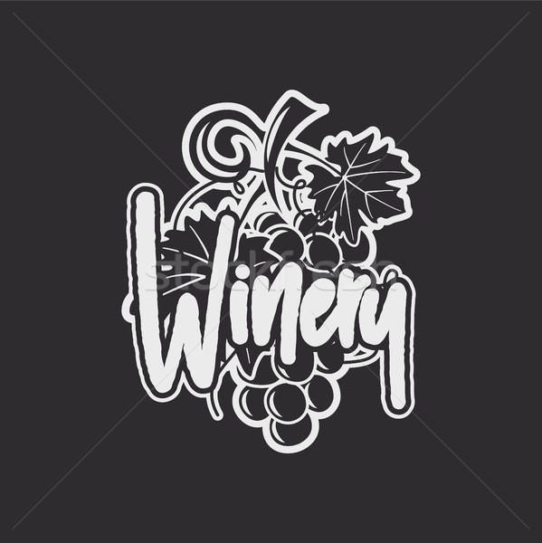 Vin Winery logo modèle boire graffitis Photo stock © JeksonGraphics