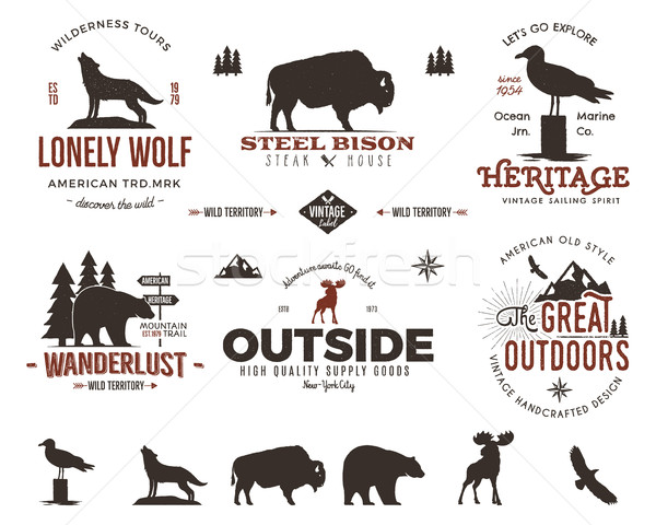 Wild animal badges set and outdoors activity insignias. Retro illustration of animal badges. Typogra Stock photo © JeksonGraphics