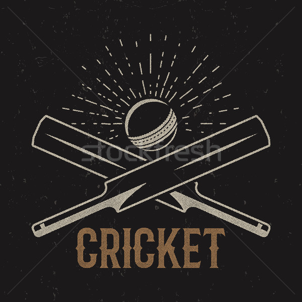 Retro cricket club emblema diseno logo Foto stock © JeksonGraphics