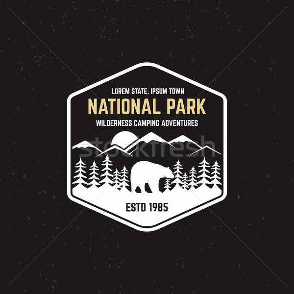 Stamp for national park, outdoor camp. Tourism hipster style patch, badge. Expedition emblem. Winter Stock photo © JeksonGraphics