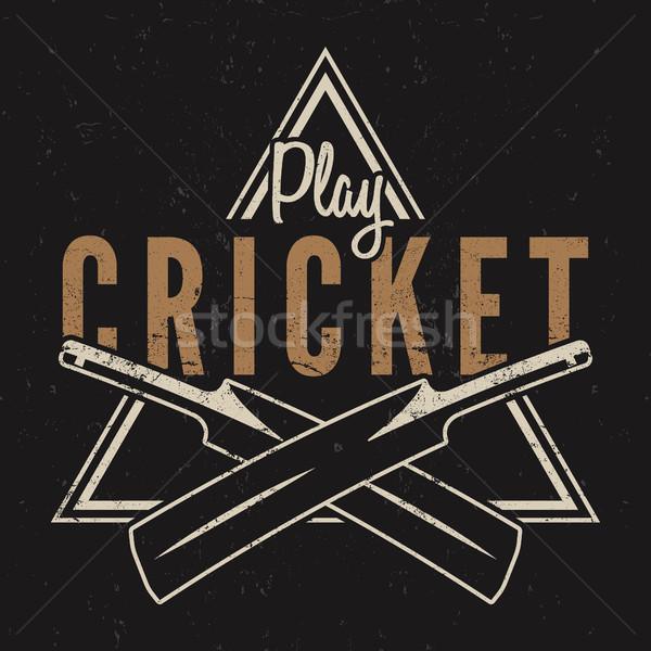 Retro críquete emblema projeto logotipo ícone Foto stock © JeksonGraphics