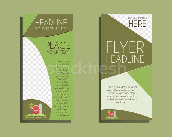 Organic Brochure Flyer design Layout template. Triangle abstract style. Ecology farm design. Isolate Stock photo © JeksonGraphics