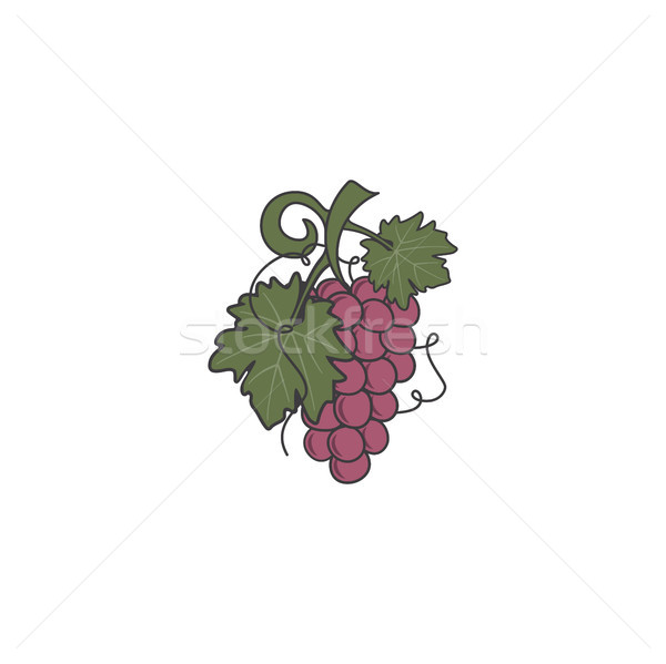Red Grape icon. Cute flat colors design. Friut symbol for logo, label or badge. Stock vector illustr Stock photo © JeksonGraphics