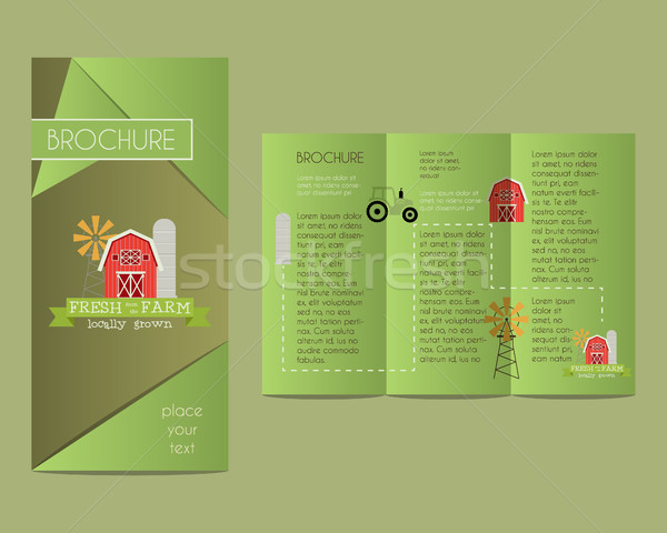 Brochures and flyer design template in polygonal style concerning to ecology, natural, organic theme Stock photo © JeksonGraphics