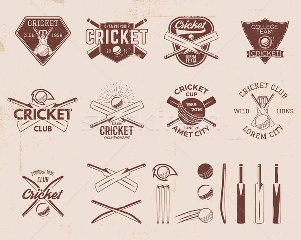 Set of retro cricket sports template logo designs. Use as icons, badges, label, emblems or print. il Stock photo © JeksonGraphics