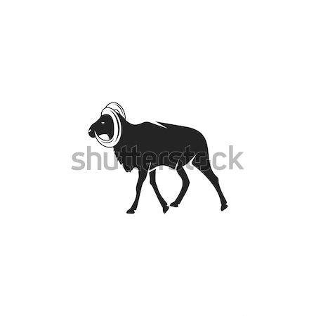 Stock photo: Wild Goat silhouette icon design. Wild animal black pictogram isolated. Stock vector concept