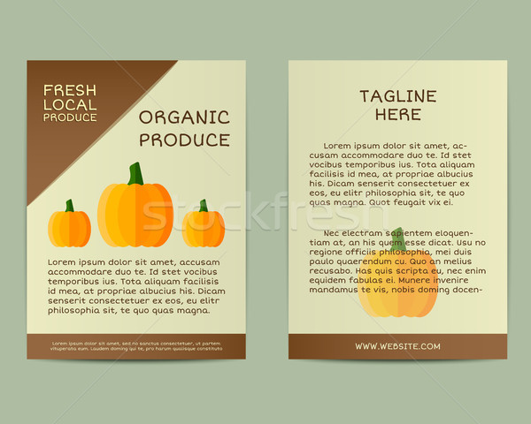 Natural business corporate identity design with pumpkin. Branding your organic company. Poster, flye Stock photo © JeksonGraphics