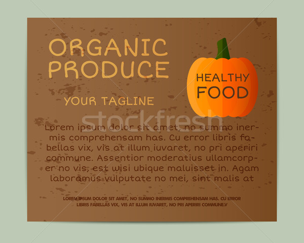 Organic brochure. Business corporate identity, pumpkin style. Branding your eco company. Poster, fly Stock photo © JeksonGraphics