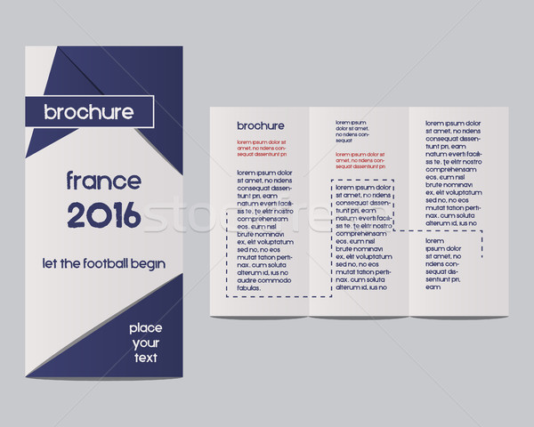 France 2016 Football. Brochure Flyer design Layout template with infographic elements. The national  Stock photo © JeksonGraphics