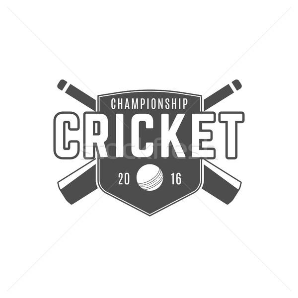 Cricket team embleem ontwerp communie kampioenschap Stockfoto © JeksonGraphics