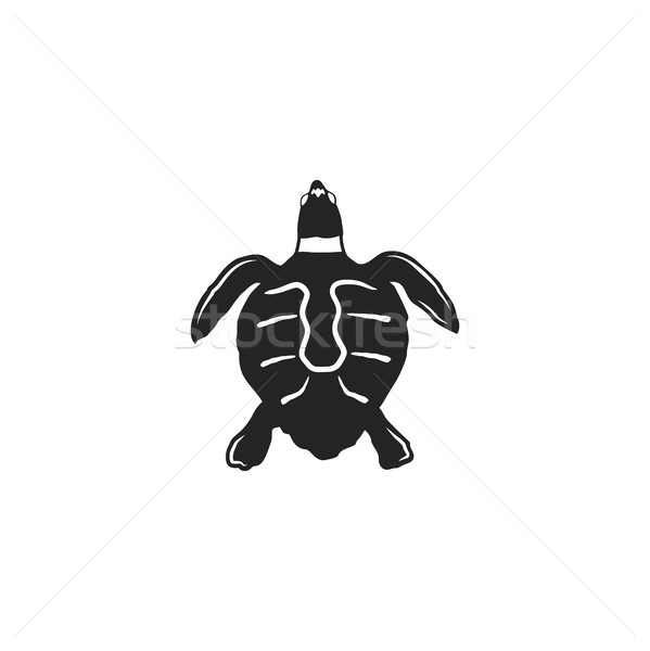 turtle silhouette shape. Wild animal black icon. Stock illustration. Vintage hand drawn style. Retro Stock photo © JeksonGraphics