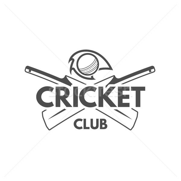 Críquete equipe emblema projeto elementos campeonato Foto stock © JeksonGraphics