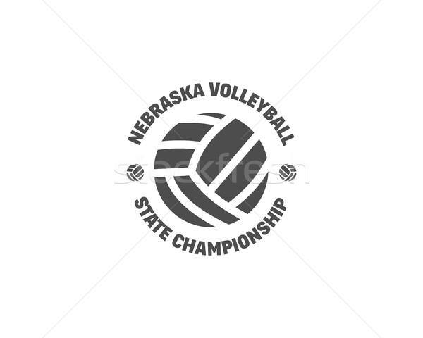 Volleyball étiquette badge logo icône sport Photo stock © JeksonGraphics