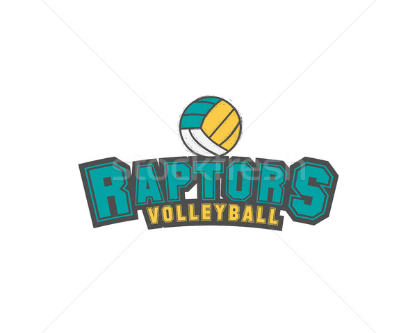 Volleyball club emblem, college league logo,  raptors design template element, tournament badge and  Stock photo © JeksonGraphics