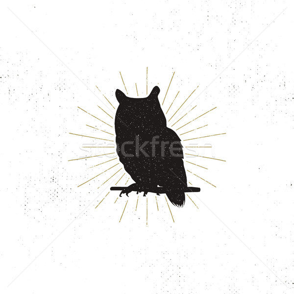 Owl silhouette shape isolated on white background. Black animal icon. Solid template with sunbursts. Stock photo © JeksonGraphics