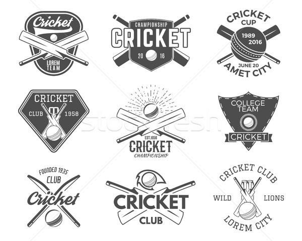 набор крикет спортивных логотип иконки Сток-фото © JeksonGraphics